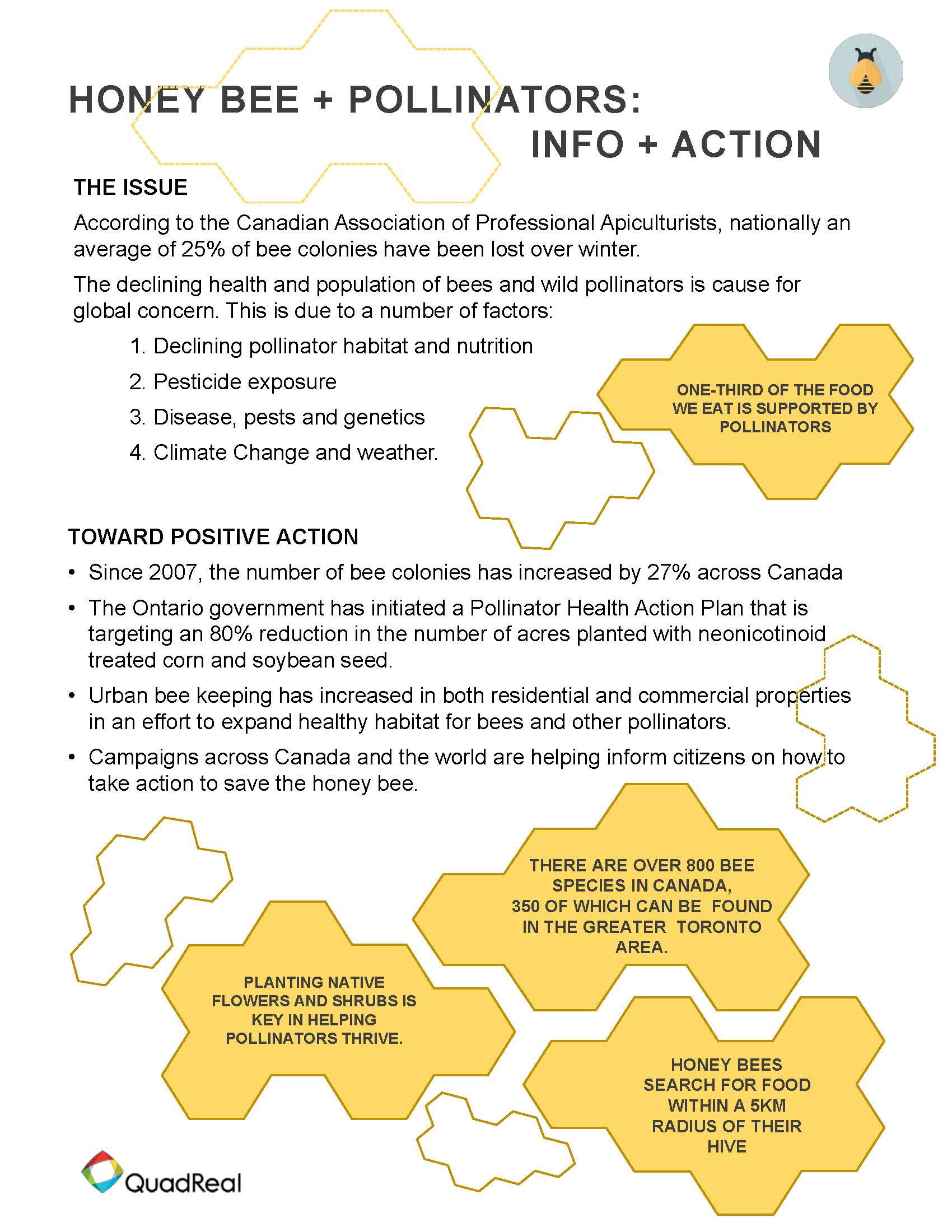 Image of info sheet