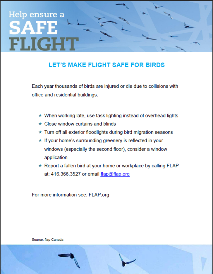 Safe Flight Info Sheet Cover Image